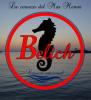 BELICH